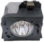 DLP3291P/EN : LAMPE POUR L300